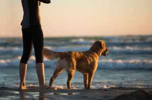 What Power Do Pets Have On Our Mental Well-Being?